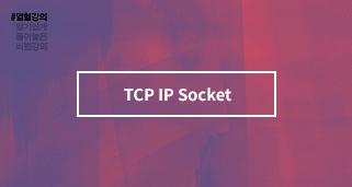 [열혈강의] 정석용의 TCP / IP 소켓 프로그래밍
